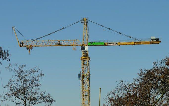 different cranes